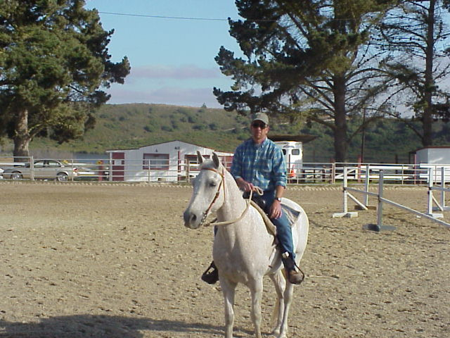 Cody (grey horse) with Joe